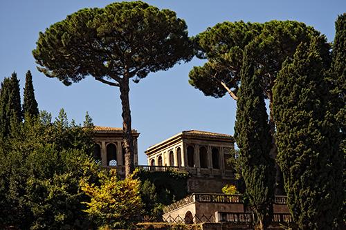Guest Houses, Roman Forum